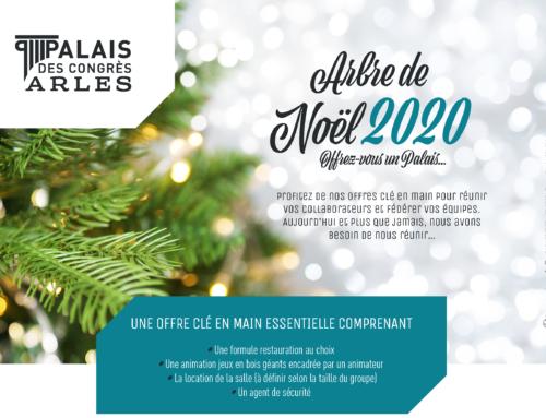 """""""Arbre de Noël 2020"""", offrez vous un Palais !"""
